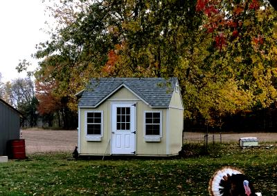 yellow shed, brooklyn, playhouse, barn, turkey